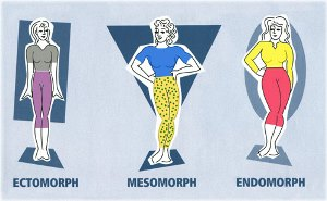 what is your body type www.timelessbeauties.ca
